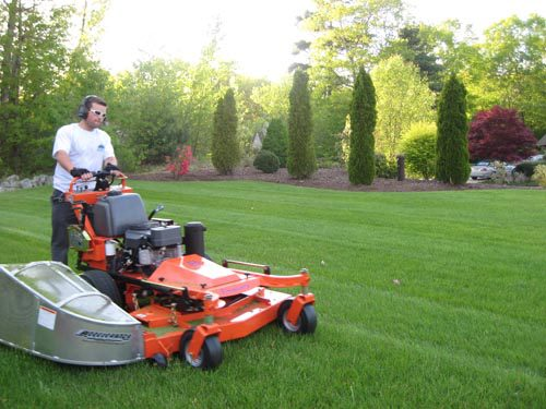 Landscaping Company Canton MA