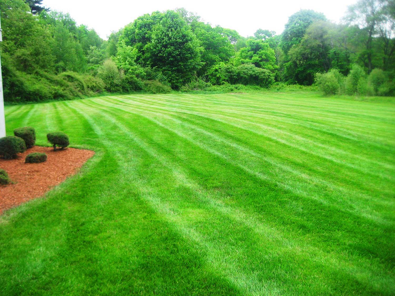 lawn care canton milton stoughton easton 04