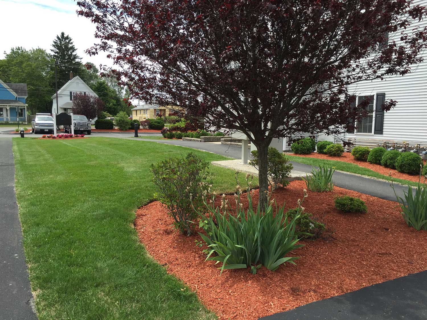 mulch-canton-milton-stoughton-easton-ma-1128